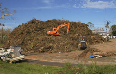 325,000 cubic metres of green waste removed