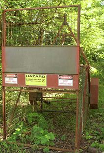 Cassowary friendly pig trap